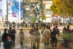 原宿,东京,日本- 2015年11月18日:繁忙的原宿主要斑马c 免版税库存图片