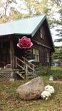 原木小屋和金属花 库存照片