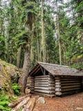 原木小屋在森林里 免版税库存图片