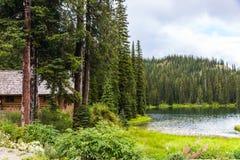 原木小屋在湖的杉木森林里 免版税图库摄影