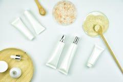 原材料和化妆用品包装的美容品,自然有机成份 免版税库存照片