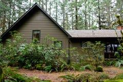 原野假期客舱在森林里 免版税库存图片