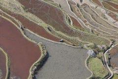 原阳米大阳台在云南,中国,其中一个最新的联合国科教文组织世界遗产名录站点 库存照片