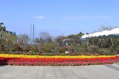 厦门yuanboyuan公园 图库摄影