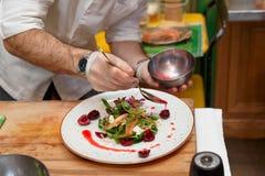 厨师倾倒在菜开胃菜之上的调味汁 库存图片