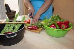 厨师切开菜成膳食 准备盘 妇女使用一把刀子并且烹调 妇女` s递烹调在的健康膳食 免版税库存图片