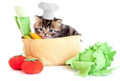 厨师查出的小猫微笑的玩具蔬菜 免版税库存图片