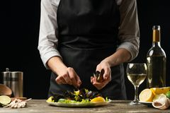 厨师淡菜用与白酒的沙拉,在黑暗的背景为设计做准备,水平的照片 烹调,食谱的概念 库存照片