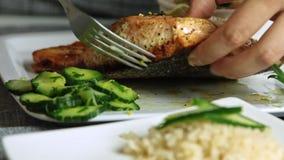 厨师烹调和测试的三文鱼鱼用米和黄瓜 股票录像