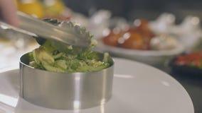 厨师烹调海草沙拉用海鲜,慢动作 股票视频