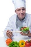 厨师煮熟的菜沙拉 图库摄影