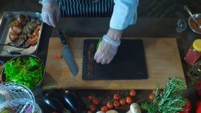 厨师被投入的烤菜在船上 股票视频
