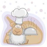 厨师绵羊 库存图片
