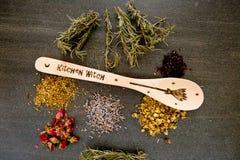 厨房巫婆-匙子用在灰色/灰色板岩背景的干草本-春黄菊,木槿,山金车,长辈花,起来了芽和 免版税库存照片