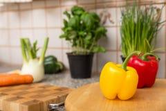 厨房用五颜六色的辣椒粉和草本 免版税库存照片