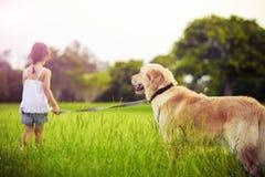 去女孩金毛猎犬走的年轻人 图库摄影