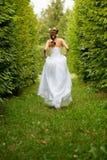 去新娘运行 库存图片