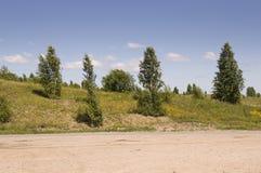 去横跨山和绿色森林的柏油路 树和他们的阴影在草 与天空蔚蓝的晴朗的夏日 ural 免版税库存图片