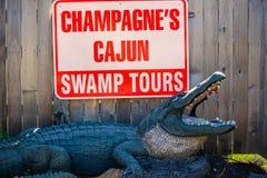 去沼泽地区域的入口路在阿比维尔,路易斯安那 免版税库存图片