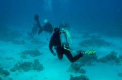 去照相机潜水员偏差组 免版税图库摄影