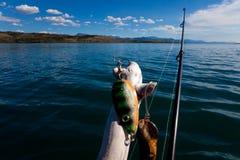 去的概念捕鱼 免版税库存图片