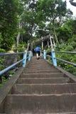 去艰难在老虎洞寺庙在甲米府,泰国 库存照片
