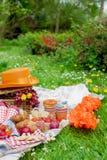 去野餐在国王` s天的庆祝 在庭院,有花的一个草甸里吃午餐 野餐、果子和酥皮点心的篮子 免版税图库摄影