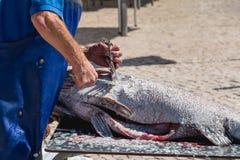 去除一条大鱼标度在街道的人 库存图片