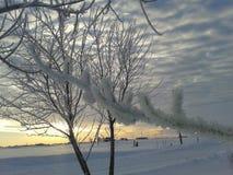 县的冬天 免版税库存照片