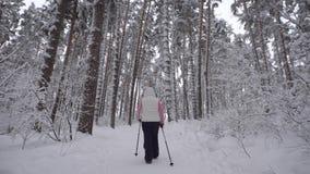 参与走在一条多雪的道路的北欧人在森林一名年长妇女的背面图 现代形式体育 股票视频