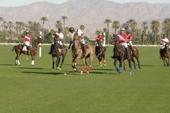 参加比赛的马球球员 免版税库存图片