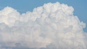 参天的积云在夏天天空时间间隔滚滚向前 影视素材