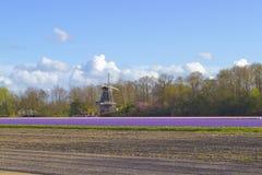 参观一台风车的游人在荷兰 图库摄影