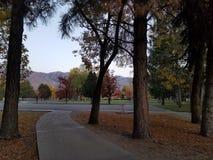 参观秋天的公园 库存照片