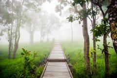 参观花园的桥梁 库存照片