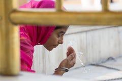 参观金黄寺庙的印地安女孩在阿姆利则,旁遮普邦,印度 库存照片