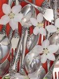 叉子和匙子有鲜花的,顶视图 库存照片