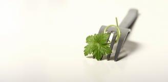 健康食物概念 免版税库存照片