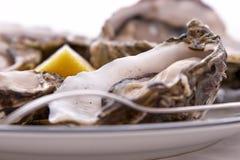 叉子柠檬牡蛎 免版税图库摄影