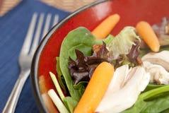 叉子沙拉 免版税库存图片