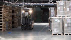 叉子起重器工作在大仓库里 夹子 有铲车的仓库保管员工作者 公司的仓库机架 库存图片