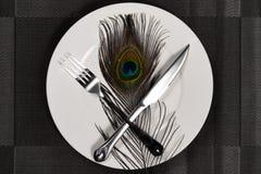 叉子&刀子和一根孔雀羽毛在吃残忍的野生生物动物的盘概念 图库摄影