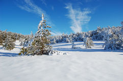 及早划分为的喀尔巴阡山脉有横向山10月雪乌克兰 免版税图库摄影