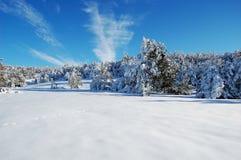 及早划分为的喀尔巴阡山脉有横向山10月雪乌克兰 库存照片