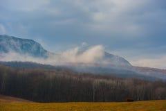 及早划分为的喀尔巴阡山脉有横向山10月雪乌克兰 免版税库存照片