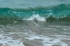 及时暂停的波浪卷毛 库存图片