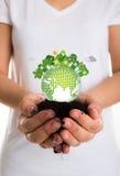 友好地球的eco 库存照片