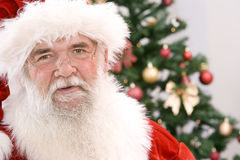 友好我们的圣诞老人 库存图片