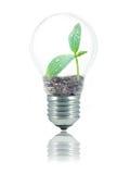 友好电灯泡的eco 图库摄影