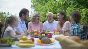 友好的家庭吃午餐在乡间别墅,社会关心,金融证券 股票录像